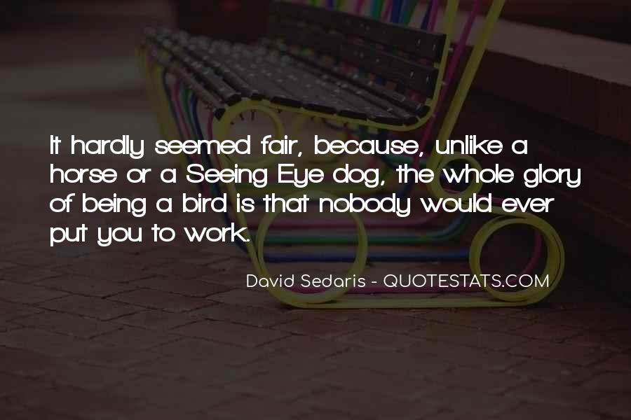 Quotes About Freedom Of Birds #1341744