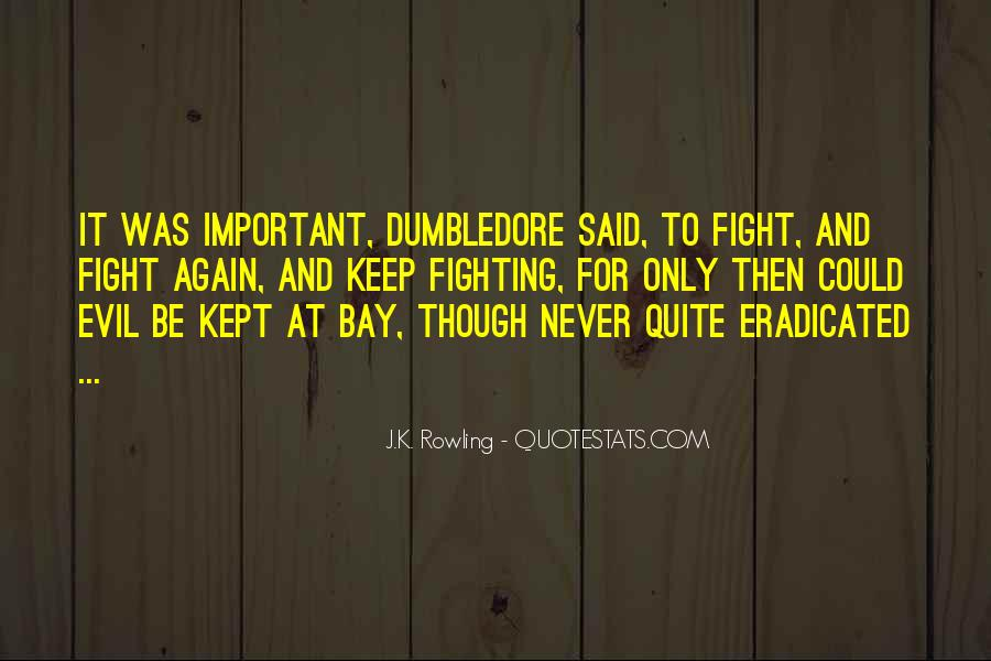 Quotes About Fighting For What's Important To You #483533
