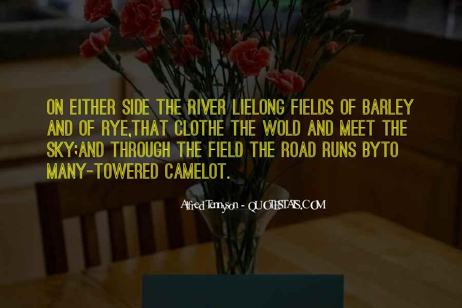 Quotes About Fields Of Dreams #989525