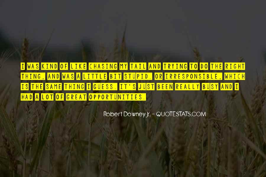 Quotes About Chasing Opportunities #980733