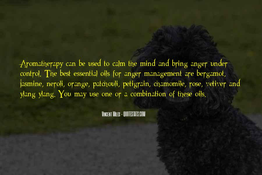 Quotes About Anger Control #1313189