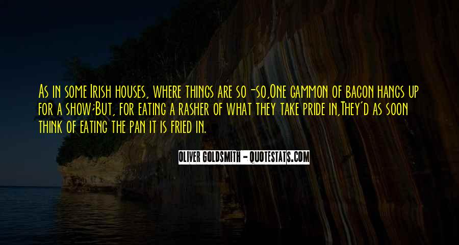 Quotes About Little Houses #36966