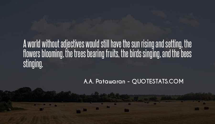 Quotes About The Sun Setting And Rising #751604