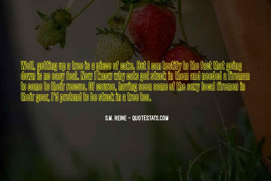 Quotes About Piece Of Cake #720167