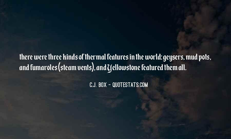 Quotes About Features #44737
