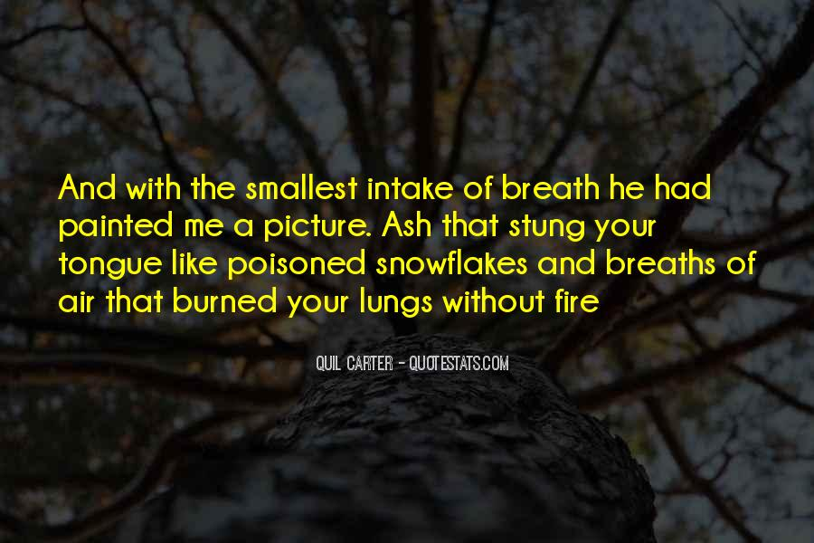 Quotes About Fire And Air #852144