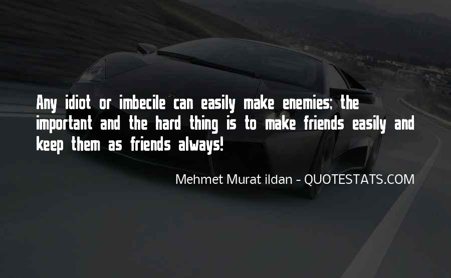 Quotes About Idiot Best Friends #1570612
