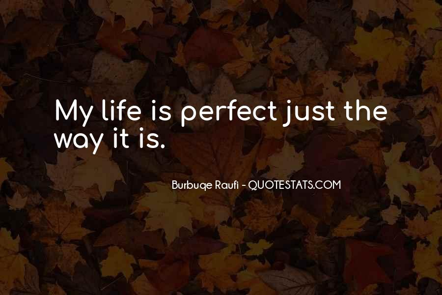Quotes About Perfect Life #126442