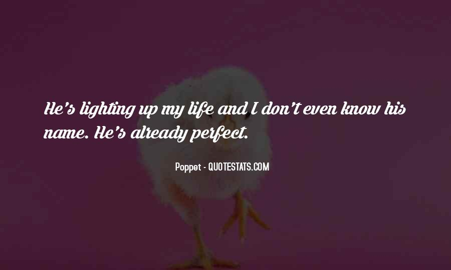 Quotes About Perfect Life #29954