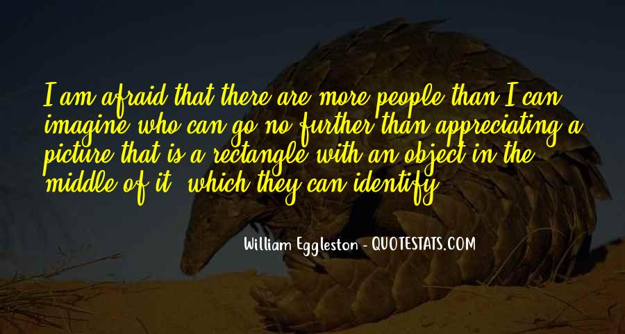 Quotes About Not Appreciating Others #42262