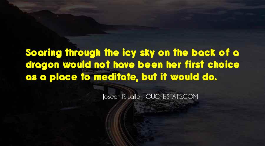 Quotes About Soaring In The Sky #1352312