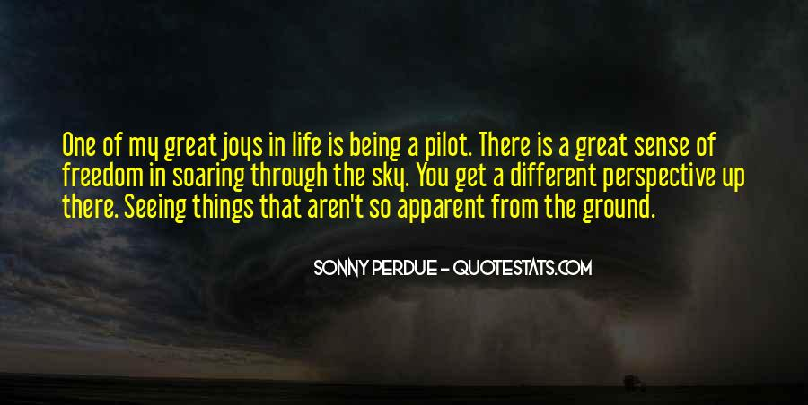 Quotes About Soaring In The Sky #801870