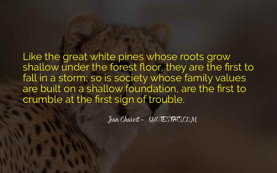 Quotes About Foundation Of Family #550317
