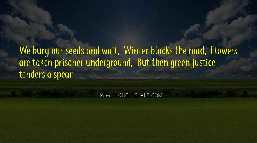 Quotes About Seeds And Flowers #1037448