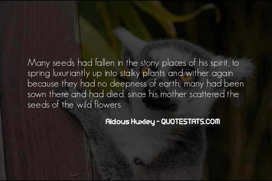 Quotes About Seeds And Flowers #1656377