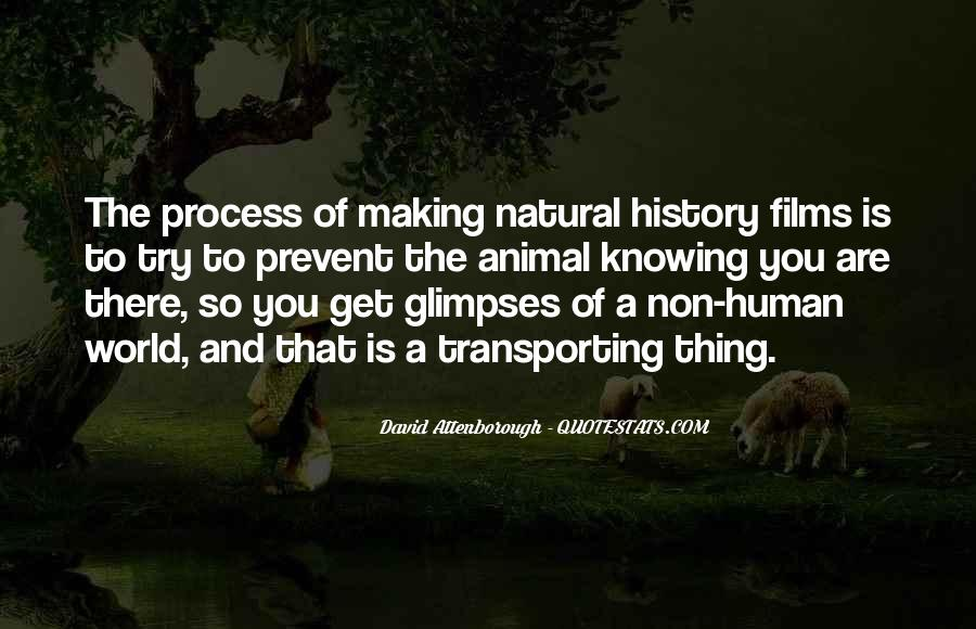 Quotes About World History #80033