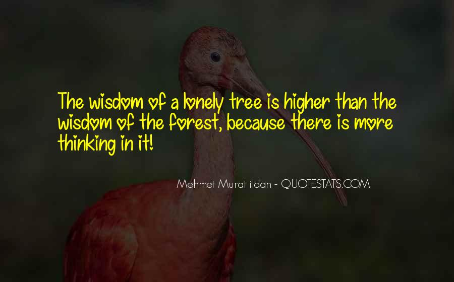 Quotes About Higher Thinking #992893