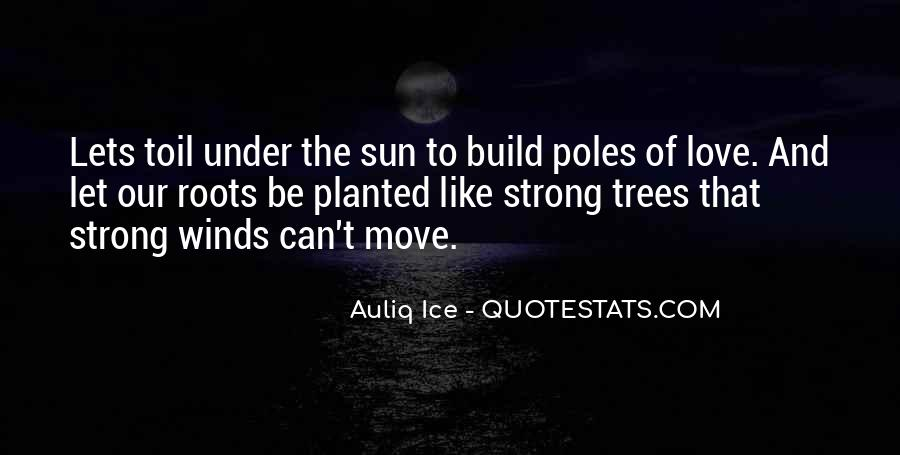 Quotes About Roots Of Love #1136419