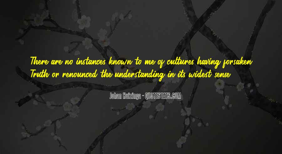 Quotes About Understanding Culture #449014
