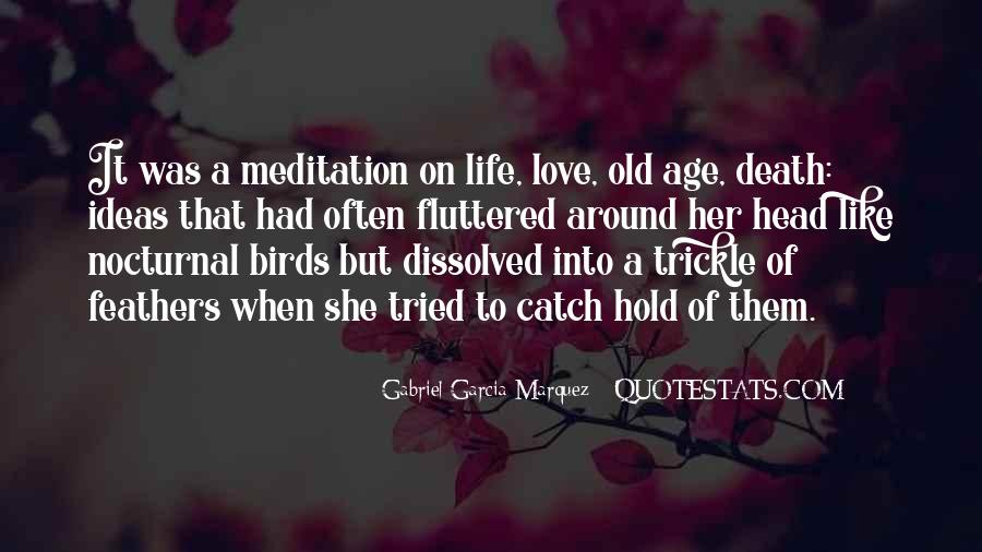 Quotes About Birds And Love #1307082