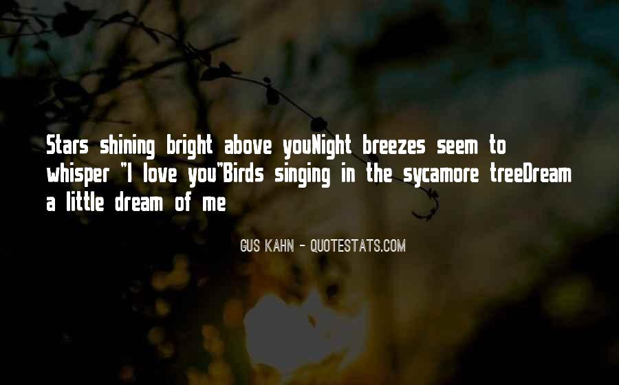 Quotes About Birds And Love #16356