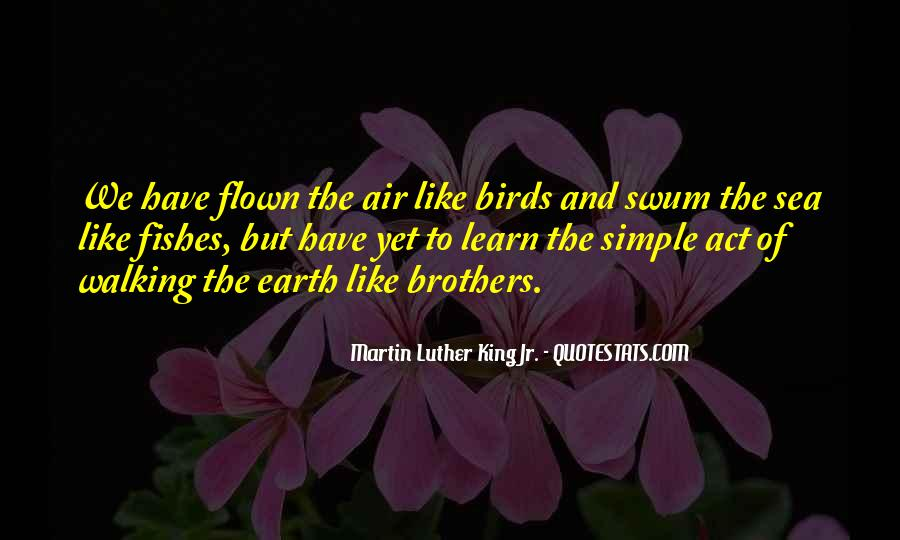 Quotes About Birds And Love #504349
