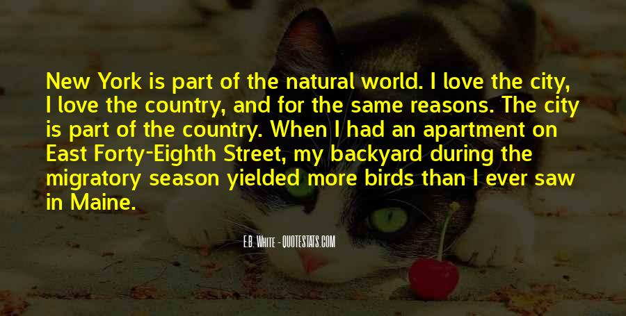 Quotes About Birds And Love #73527