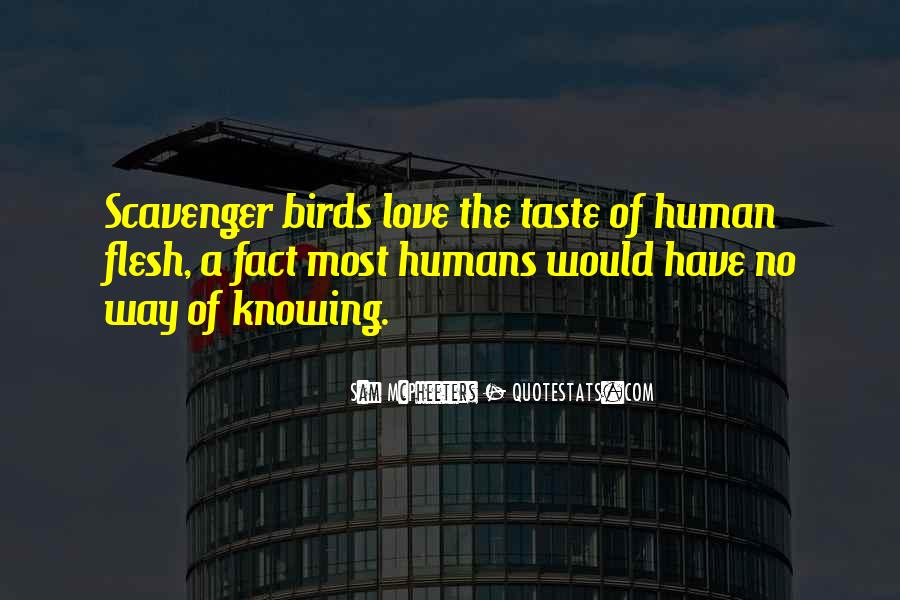 Quotes About Birds And Love #918511