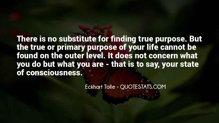Quotes About Finding Life Purpose #140241