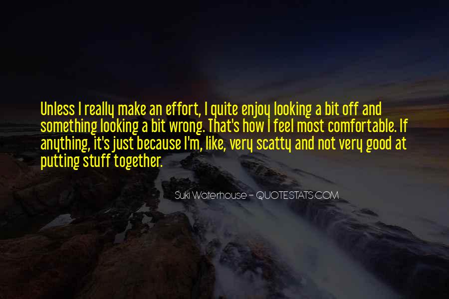 Quotes About Someone Not Putting In Effort #672997