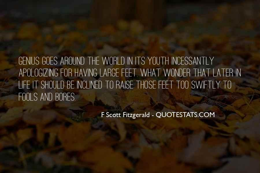 Quotes About Life F Scott Fitzgerald #696113