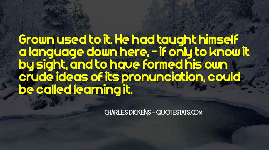 Quotes About Learning A Language #735324