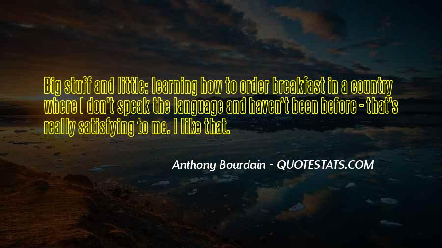 Quotes About Learning A Language #84960