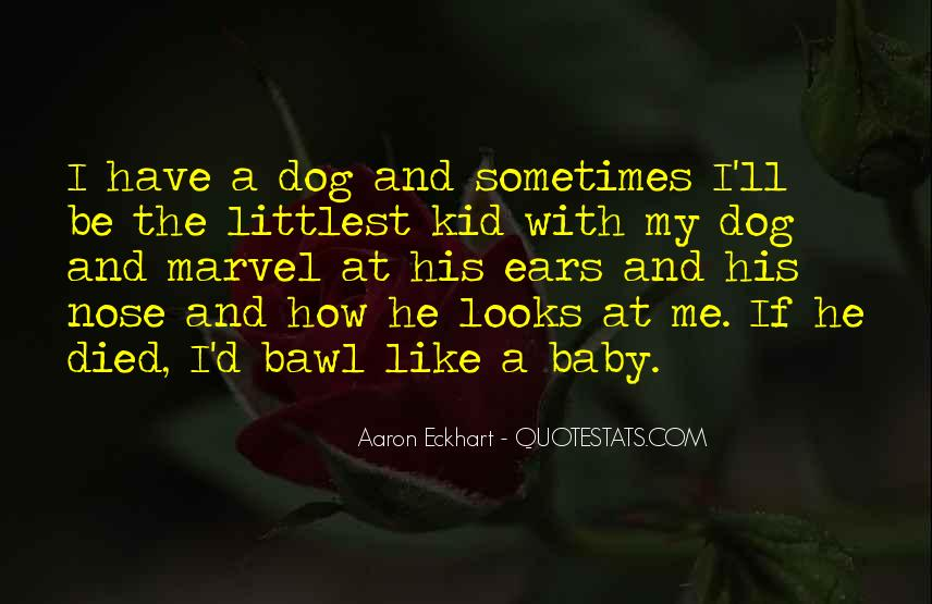 Quotes About A Dog's Nose #212055