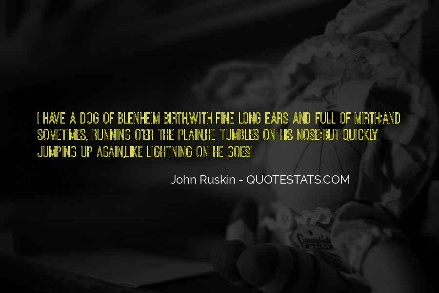 Quotes About A Dog's Nose #789815