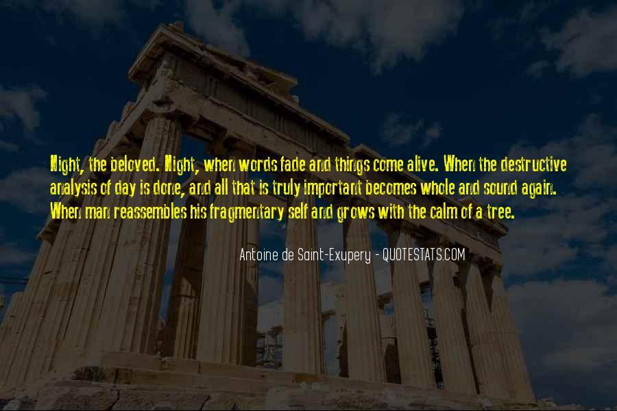 Quotes About Destructive Words #1079088
