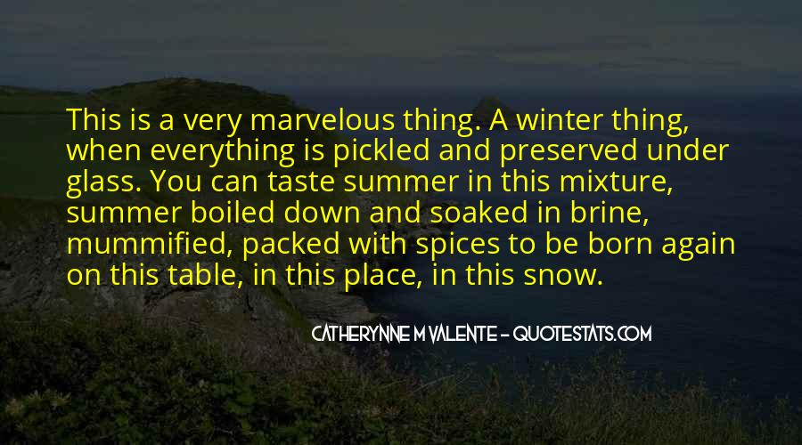 Quotes About Winter And Snow #1016245