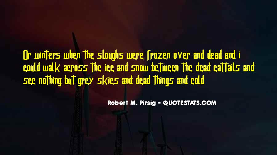 Quotes About Winter And Snow #226241