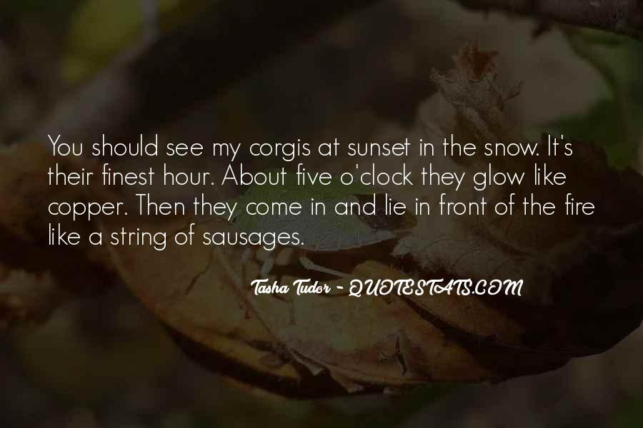 Quotes About Winter And Snow #688748