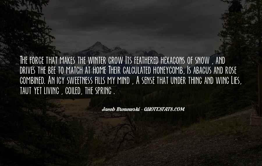 Quotes About Winter And Snow #766122
