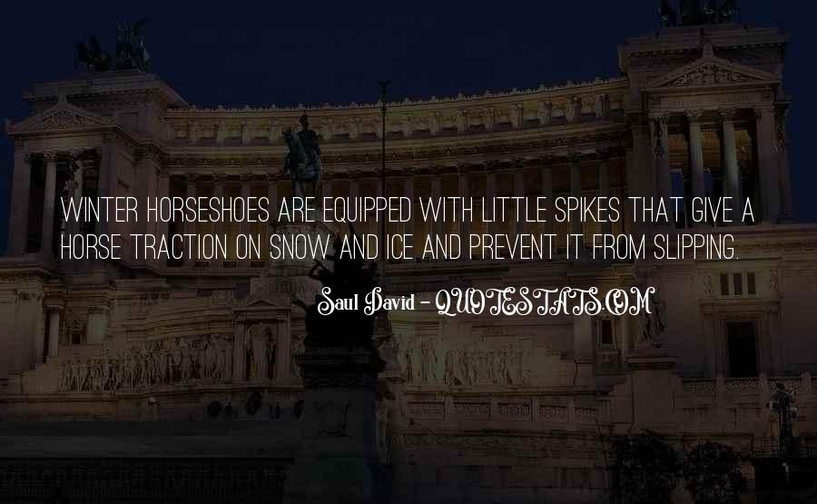Quotes About Winter And Snow #939300