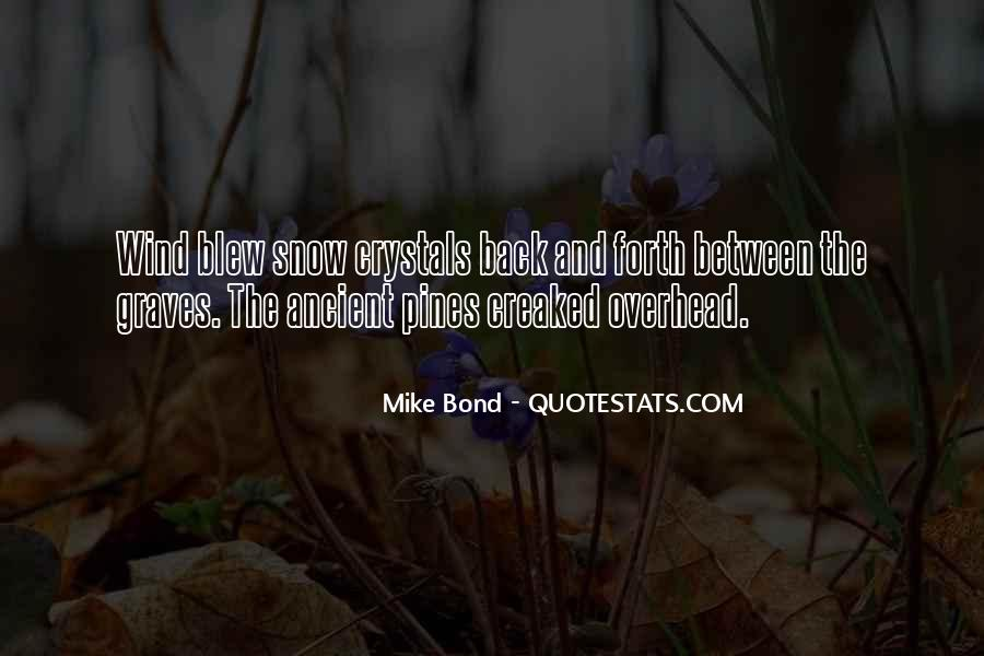 Quotes About Winter And Snow #974096