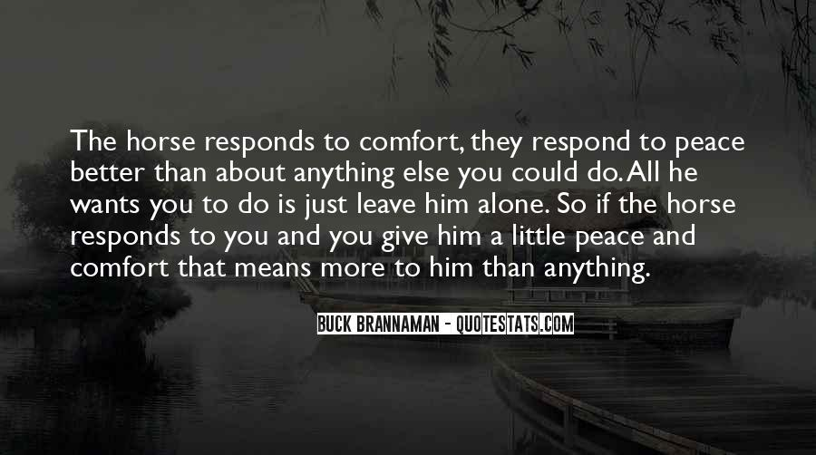 Quotes About Comfort And Peace #106299