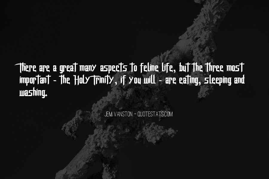 Quotes About The Most Holy Trinity #1343068