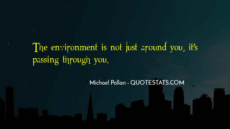 Quotes About Passing Through #151311