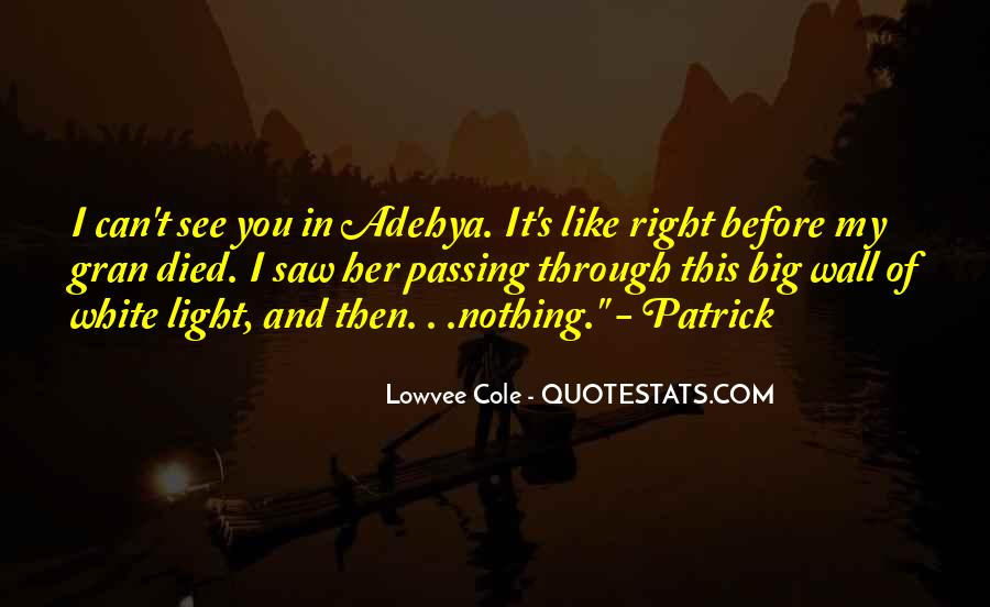 Quotes About Passing Through #479165