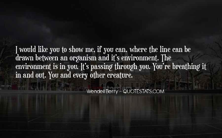 Quotes About Passing Through #728734