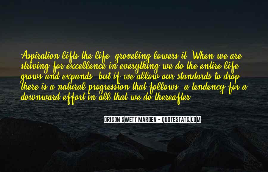 Quotes About Striving For Excellence #704107