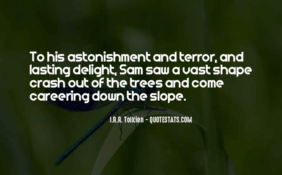 Quotes About Astonishment #132663