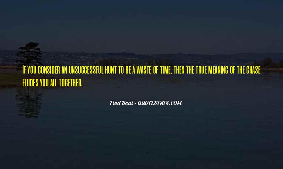 Quotes About Waste Of Time #121139
